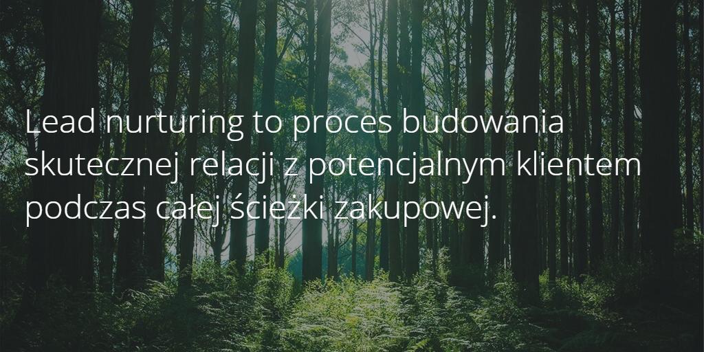 lead nurturing definicja
