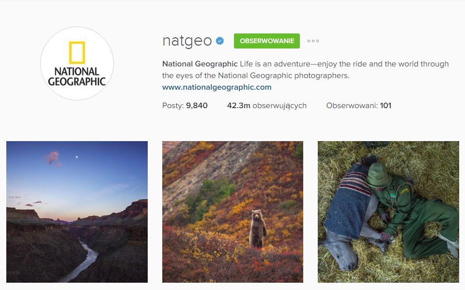 wskazówki promocji marki na Instagramie